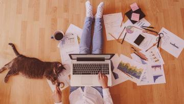 Pregatirea datelor pentru lucrul de acasa